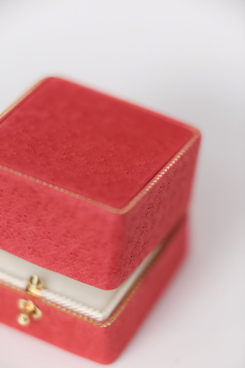 Bark-and-Berry-Grand-Melon-double-slot-vintage-wedding-embossed-monogram-velvet-leather-ring-box-002