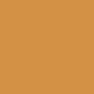 Salted Caramel