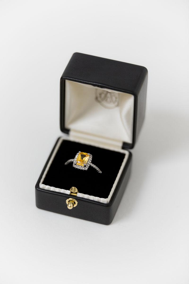 Bark-and-Berry-Grand-Ludovic-XIV-classic-lock-vintage-wedding-embossed-engraved-enameled-monogram-velvet-leather-double-single-slot-ring-box-001