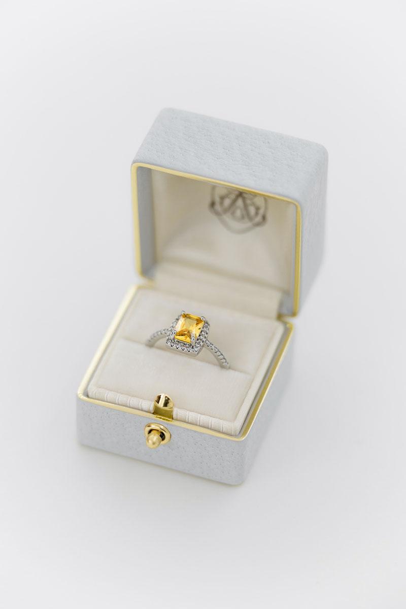 Bark-and-Berry-Grand-Cloud-classic-lock-vintage-wedding-embossed-engraved-enameled-edge-monogram-velvet-leather-ring-box-001